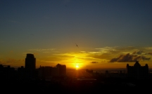 http://camerashyness.com/2013/04/27/day-117-morning-flight/