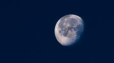 https://camerashyness.com/2013/04/01/day-91-luna/