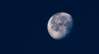 http://camerashyness.com/2013/04/01/day-91-luna/
