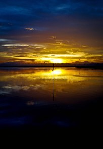 https://camerashyness.com/2013/05/01/day-121-summer-sunset/