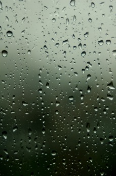 https://camerashyness.com/2013/07/29/day-210-rainy-days/