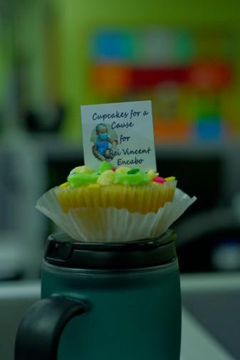 https://camerashyness.com/2013/07/08/day-189-cupcake-for-a-cause/