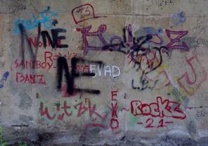 https://camerashyness.com/2013/09/07/day-250-graffiti/