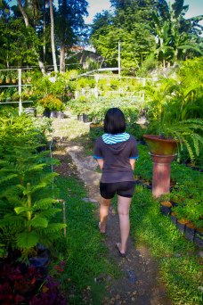 https://camerashyness.com/2013/11/02/day-306-garden-girl/