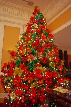 https://camerashyness.com/2013/12/25/day-359-christmas-day/