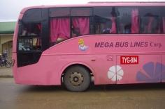 IMGP8953